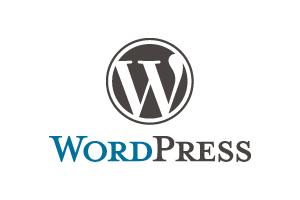 CMS導入WEBシステム開発