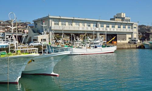 漁協向け統合システム